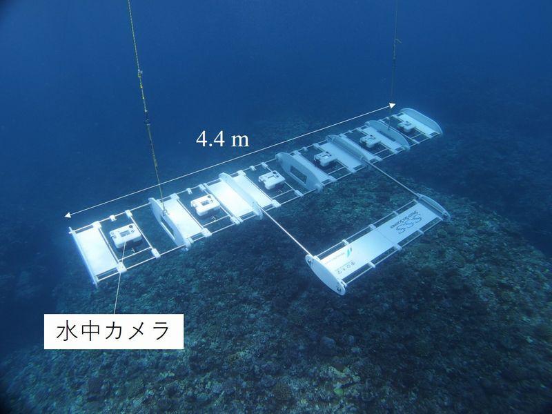 東大とウインディーなど、AIカメラアレイでサンゴ分布調査