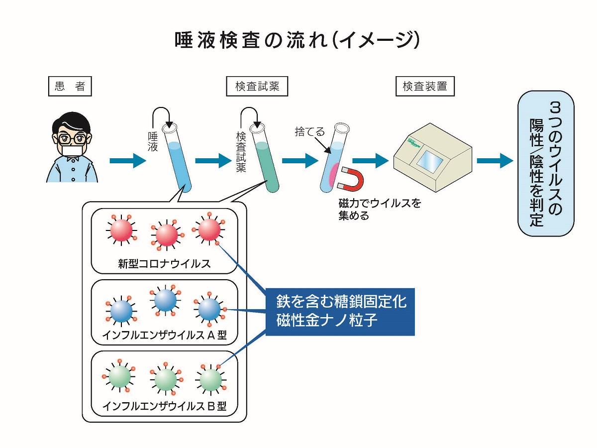 スディックスバイオテックと澁谷工業、唾液によるPCR検査装置開発へ