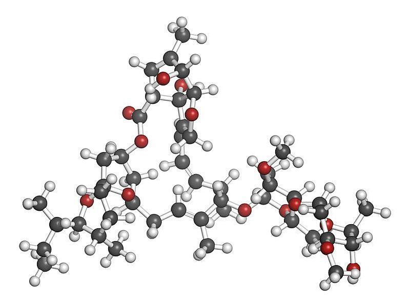 北里大、新型コロナに対するイベルメクチンの治験の詳細が明らかに