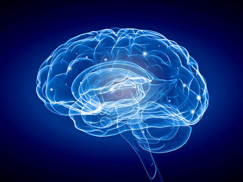 NIH、脳研究イニシアチブに5億ドルを追加投資