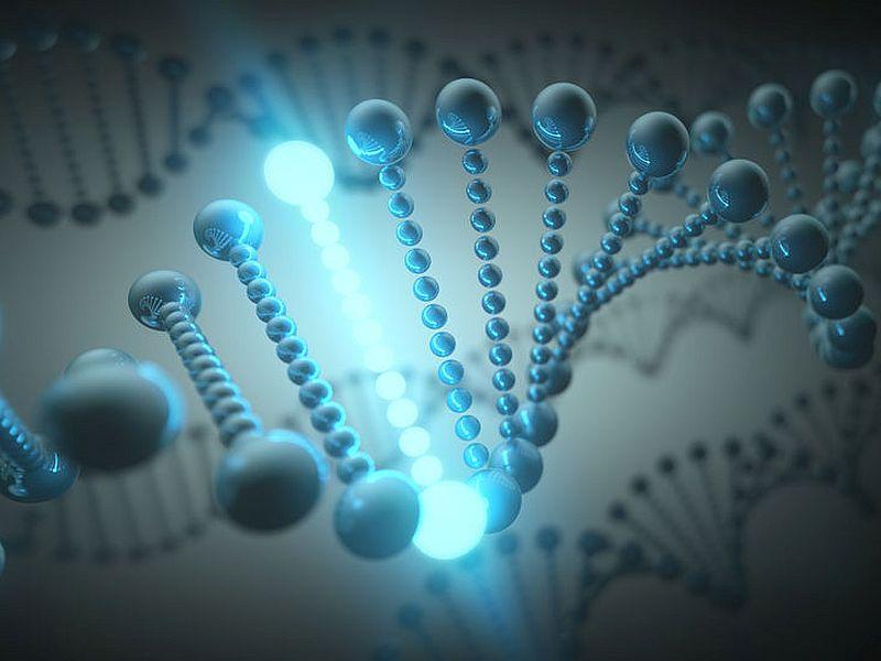 米Verve Therapeutics社、霊長類の単回遺伝子編集療法でLDL-Cが6カ月後まで低下