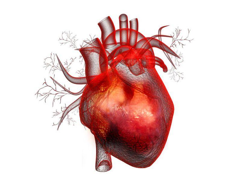 米Baylor医科大学など、心筋梗塞後の心不全にMCB-613の有効性を示す