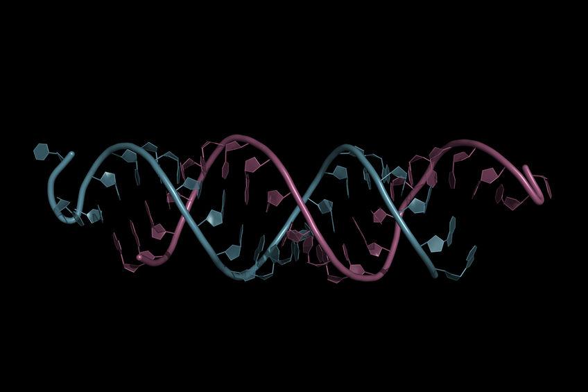 核酸医薬、国内製薬トップ11社が研究に着手
